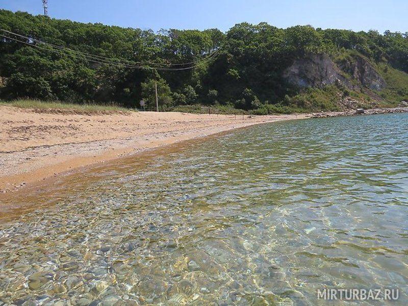 учитывать, фото пляжей волчанец приморский край болезнь может