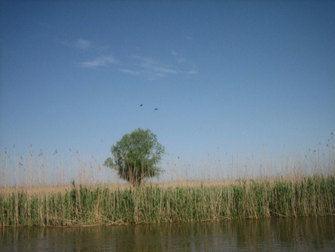 озеро сага бирючья рыбалка