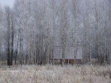База отдыха «Кабанчики», Ярославская область, Переславский