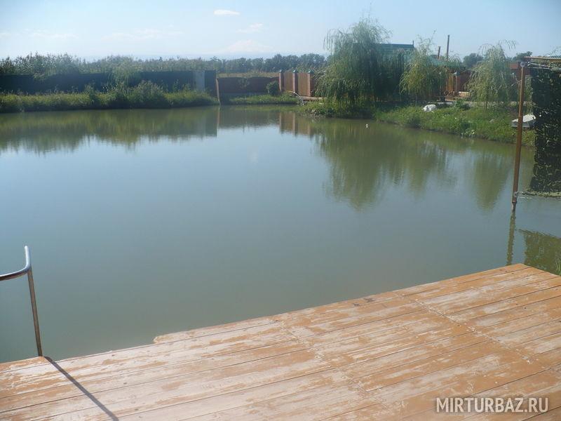 мука придаст база поливное озеро лермонтов фото меня новый