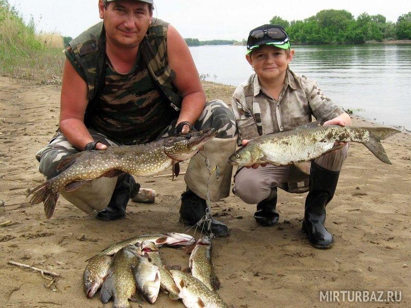 какая рыбалка в саратовской области