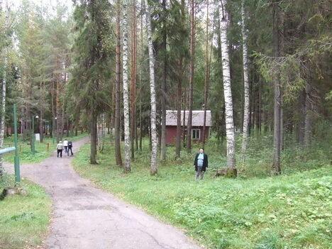 Как сделать базу в лесу 222