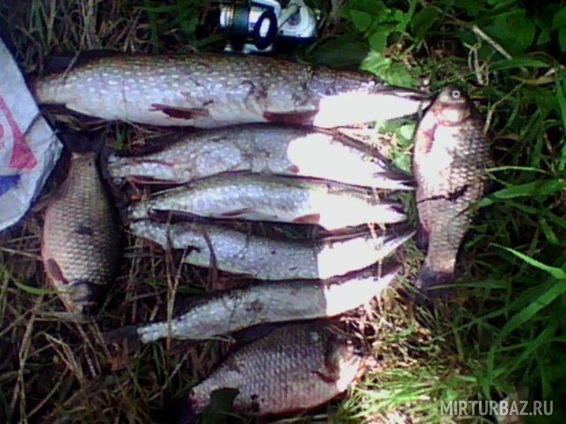 рыбалка в красноярском крае 2015