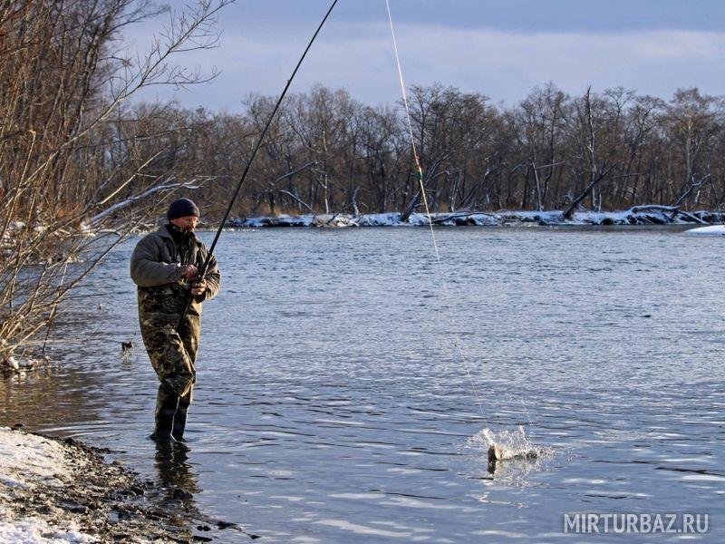 на что ловится рыба налим