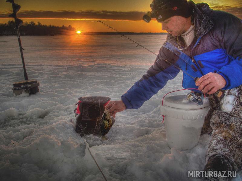 купить готовые рыболовные снасти